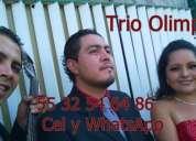 Trios musicales lunes a viernes promociones