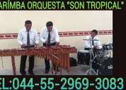 Marimba en nicolÁs romero 5305-4999