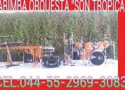 Marimba  en df y estado 55-2969-3083