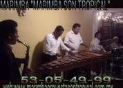 Marimbas al 53-05-49-99