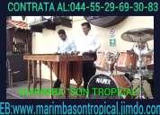 marimba y grupo al 5305-49-99