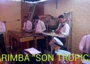 Marimba orquesta son tropical 5305-49-99