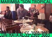 Marimba para festejos 5305-4999