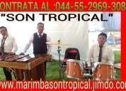 Marimba en cuautitlan 55-2969-3083