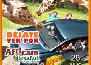Viaje africam safari