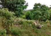 Excelente terreno, san antonio bombano, media hectarea