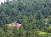 Vendo terreno 1000 m2 para cabaña