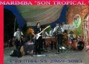 Marimba en vivo 5305-4999