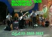 Tultitlan.marimba orquesta 55-2969-3083