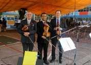 Violinistas profesionales para conciertos y  bodas