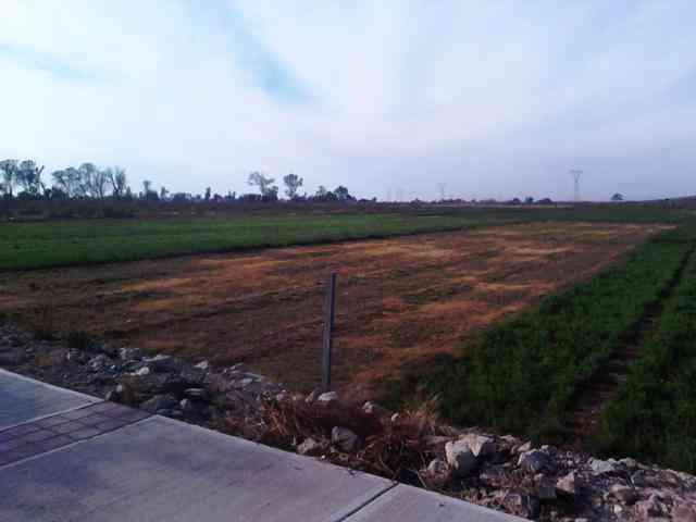 Terreno en venta Silao una hectarea por General Motors Silao