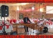 Marimba de coacalco 55-2969-3083