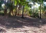 ¡terreno con playa privada! excelente precio