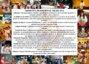 Diplomado de herbolaria, temazcal y medicina mexicana