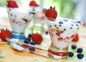 SCOBY Té Kombucha Búlgaros Kéfir Yogurt y Tíbicos