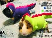 Aliipet traje de dinosaurio para perro 449 277 2412