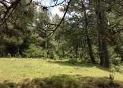 terrenos de 2,500 m2 en la sierra de tapalpa (juanacatlan)