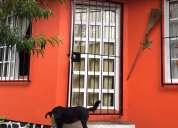 Casa de campo en la ciudad de mexico
