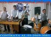 Marimba son tropical 04455-2969-3083