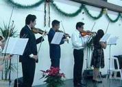 Clases de violín particulares inscribete ahora