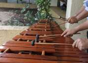 Marimba profesional cuernavaca