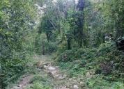 Excelente terreno 1.6 hectareas