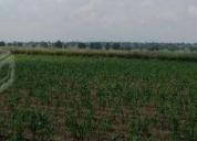 Excelente terreno cuapiaxtla 287 hectáreas