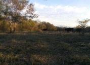 Oportunidad! 78 hectareas nueva esparanza tonila