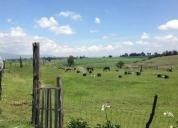 Renta de excelente rancho en ixtlahuaca