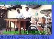 Marimba versatil y profesional 5305-49-99