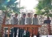 Marimba para fiestas 55-2969-3083