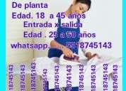 Solicito muchachas de planta 5518745143