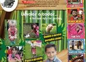 Granja infantil, renta de ponys y caballos, spa para niñas, photobox, inflables, piñatas, botargas