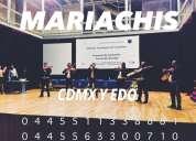 Mariachis por santa fe alvaro obregon 0445511338881 serenatas urgentes en alvaro obregon cdmx