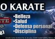 Kenpo karate en satélite naucalpan karate studio satélite