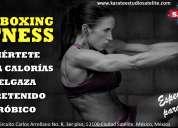 Kickboxing fitness femenil en satélite naucalpan