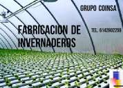 Fabricacion de invernaderos grupo coinsa