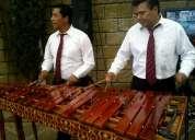 Marimba en melchor ocampo 53054999
