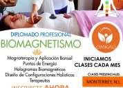 Diplomado biomagnetismo holistico