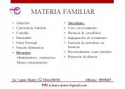 Servicios jurídicas en materia familiar
