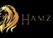 Hamza security: seguridad diseñada para usted