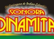 Sonora dinamita contratacion directa en mÉxico