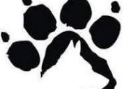 Escuela de educacion canina