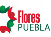 Flores puebla en meèxico un servicio de arreglos florales, ramos, plantas y regalos a domicilio