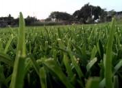 Pasto en rollo y tierra para jardin