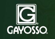 Asesor de ventas gayosso