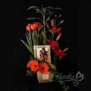 Arreglos De Flores Para Hombres Miguel Hidalgo Doplim