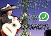 Mariachis profesionales urgentes cdmx 5523696271