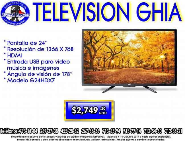 """TELEVISION GHIA DE 24"""""""