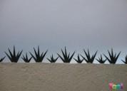 Picos de acero para barda y seguridad perimetral de 8 puntas
